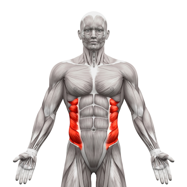strengthen-oblique-muscles-blog